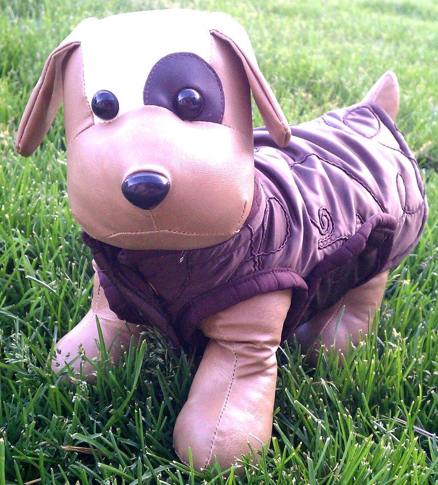 Giggles and Barks – local Colorado Springs online doggy lovin biz!